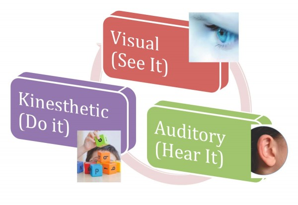 multisensory learning Want to make your efl class fun and interesting start using multisensory learning to add excitement to your efl activities.